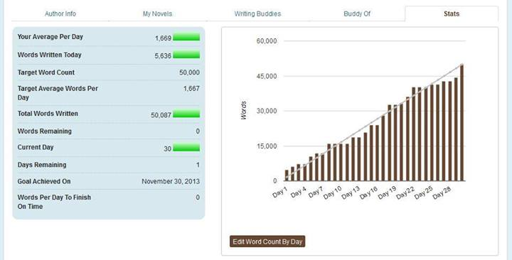 NaNoWriMo Finding You stats